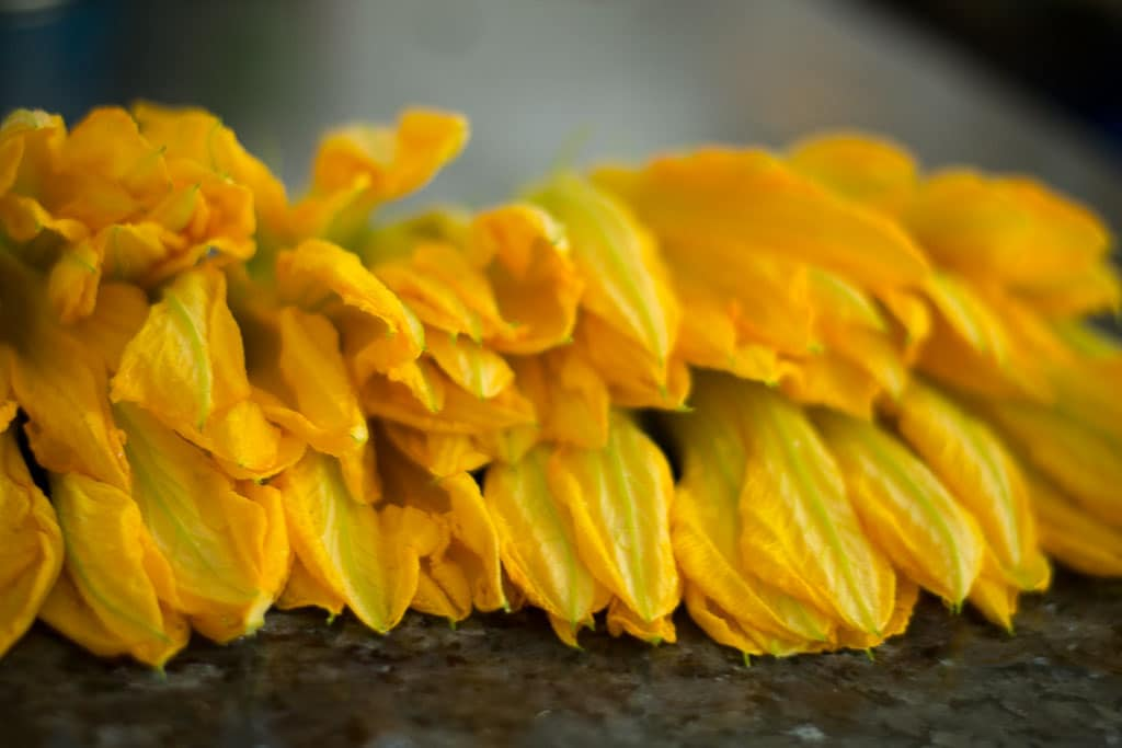 Washed pumpkin flowers