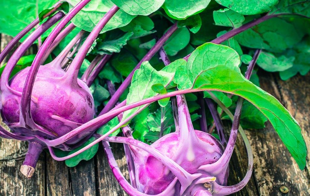 Organic purple kohlrabi
